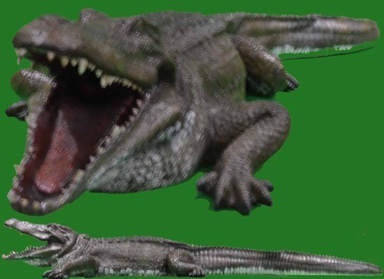 Alligator<div style='clear:both;width:100%;height:0px;'></div><span class='cat'>Animal Props</span>