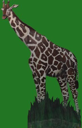 Giraffe<div style='clear:both;width:100%;height:0px;'></div><span class='cat'>Animal Props</span>