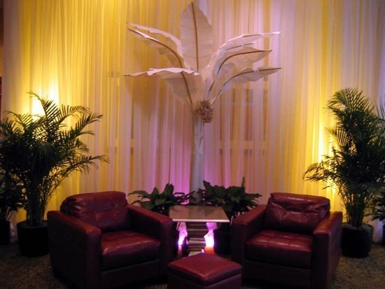 Banana tree<div style='clear:both;width:100%;height:0px;'></div><span class='cat'>African and Jungle Props</span>